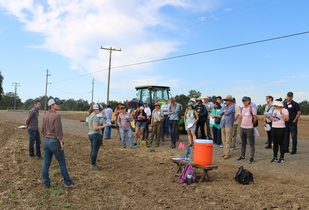 Participants at Russell Ranch Field Day view a number of agroecosystem field trials at UC Davis.
