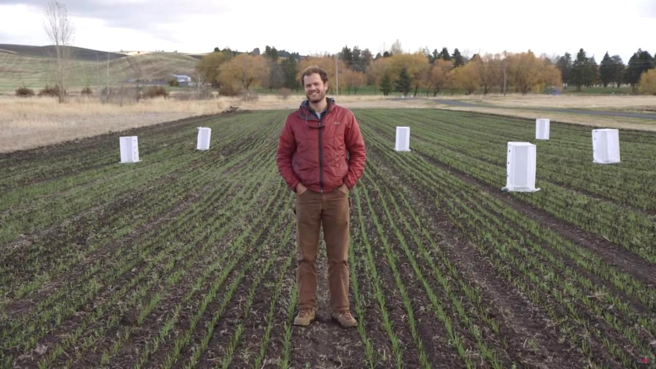 Troy Magney, assistant professor in the Department of Plant Sciences, is just one of the researchers with the Smart Farm Big Idea who are working to turn agricultural data into comprehensible information for farmers.
