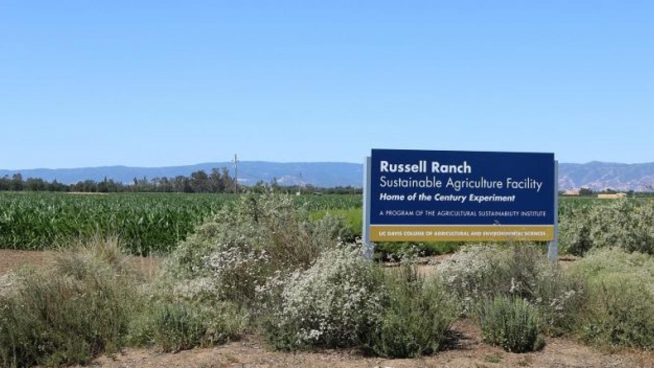 The Russell Ranch Sustainable Agriculture Facility at UC Davis. (photo: Ann Filmer/UC Davis)