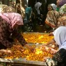 Farmers spread apricots on a tray for drying