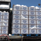 Boxes of vegetables being ice-cooled prior to shipment