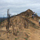 Students in a UC Davis fire ecology class walk along a burned ridge top of Stebbins Cold Canyon Natural Reserve in 2016. (photo Alexandra Weill, UC Davis)