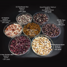 The new varieties released by UC Davis include seed coat patterns and cooking quality that are desired by chefs and home cooks. The new varieties combine these characteristics with improved productivity and disease resistance on organic farms. (Travis Parker/UC Davis)